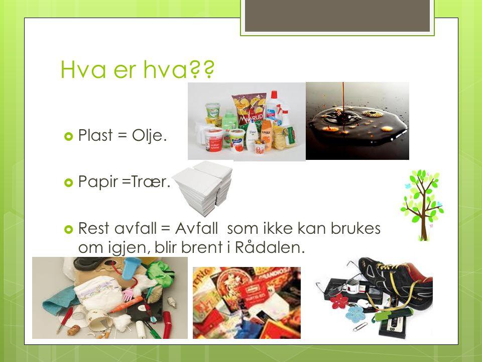 Hva er hva Plast = Olje. Papir =Trær.