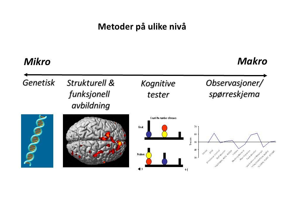 Mikro Makro Metoder på ulike nivå Genetisk Strukturell & funksjonell