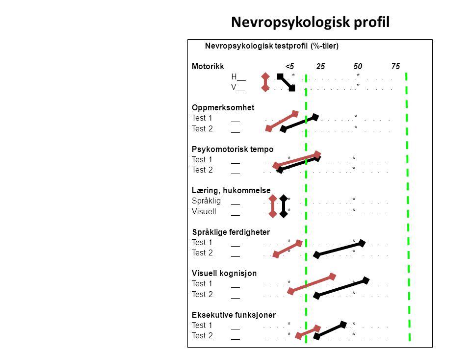 Nevropsykologisk profil