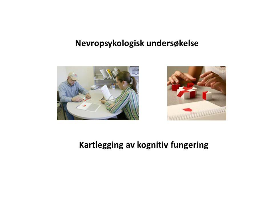 Nevropsykologisk undersøkelse