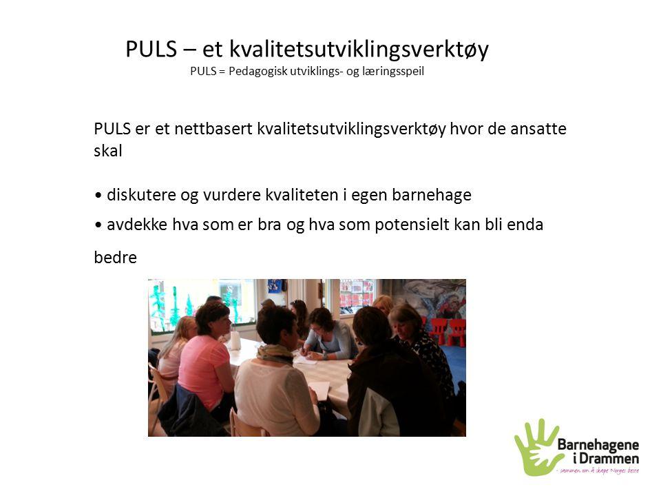 PULS – et kvalitetsutviklingsverktøy