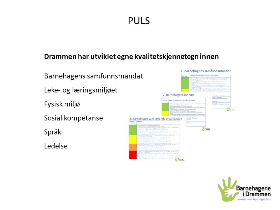 PULS Drammen har utviklet egne kvalitetskjennetegn innen