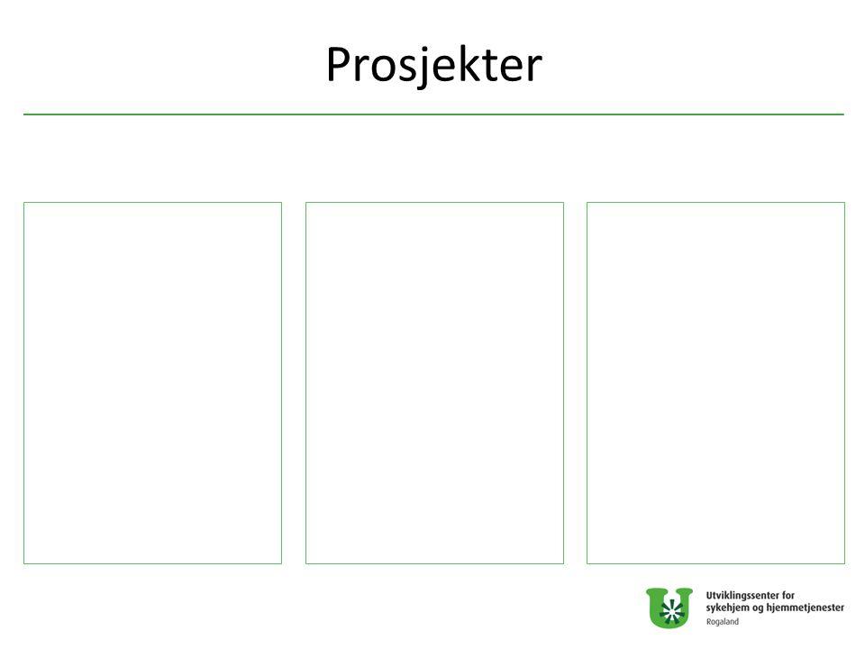 Prosjekter