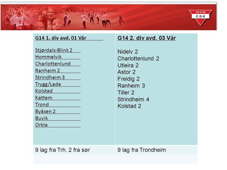 Sesongen 2014 G14 1. div avd. 01 Vår Stjørdals-Blink 2 Hommelvik