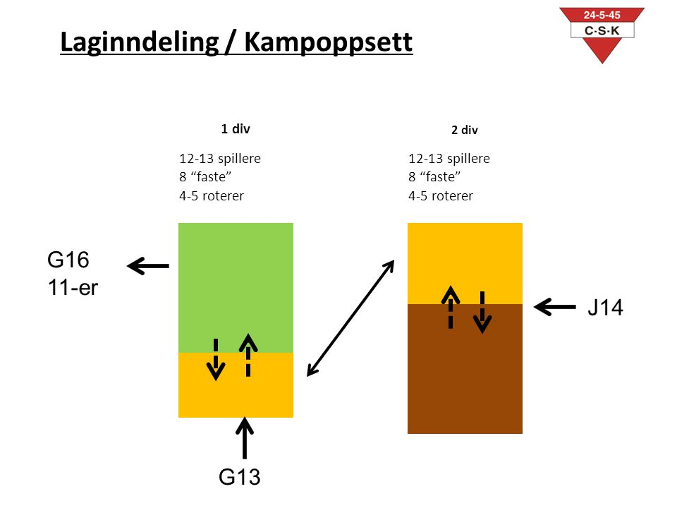 Laginndeling / Kampoppsett