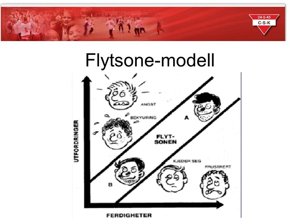 Flytsone-modell