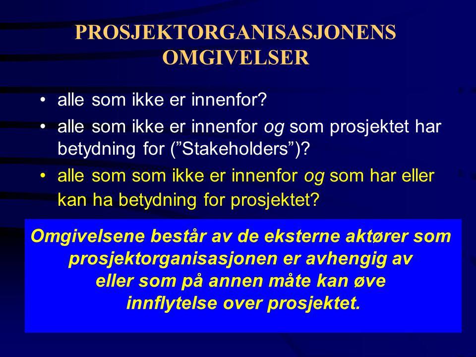 PROSJEKTORGANISASJONENS OMGIVELSER