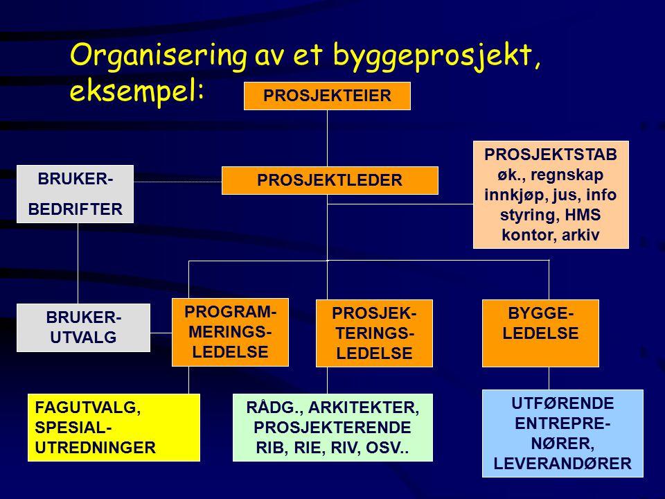 Organisering av et byggeprosjekt, eksempel: