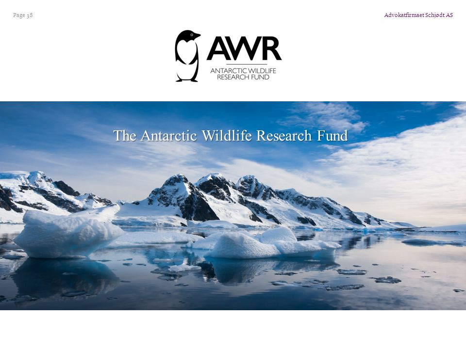 The Antarctic Wildlife Research Fund