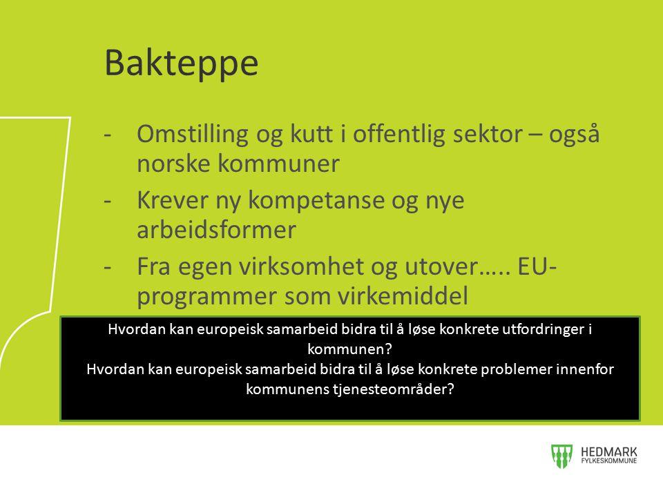 Bakteppe Omstilling og kutt i offentlig sektor – også norske kommuner
