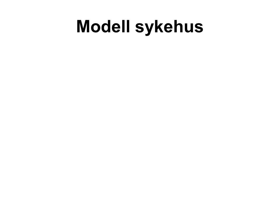 Modell sykehus