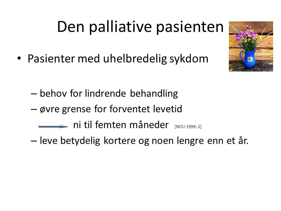 Den palliative pasienten