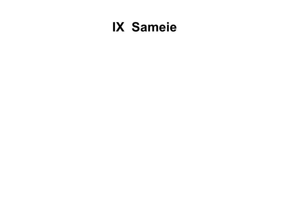 IX Sameie