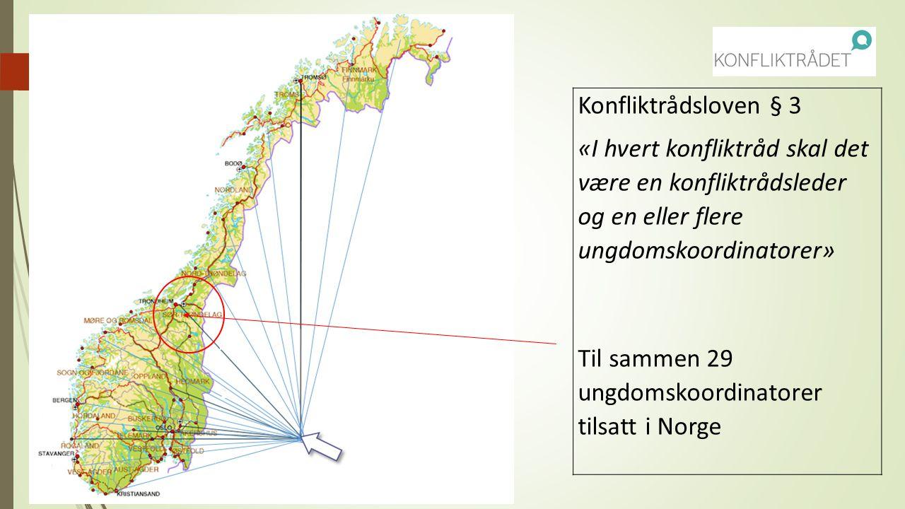 Til sammen 29 ungdomskoordinatorer tilsatt i Norge