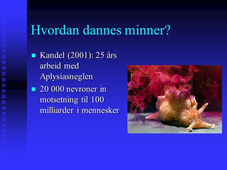 Hvordan dannes minner Kandel (2001): 25 års arbeid med Aplysiasneglen