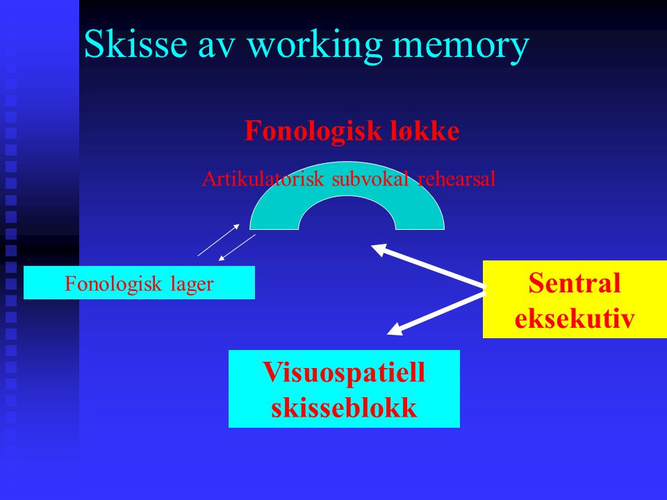 Skisse av working memory
