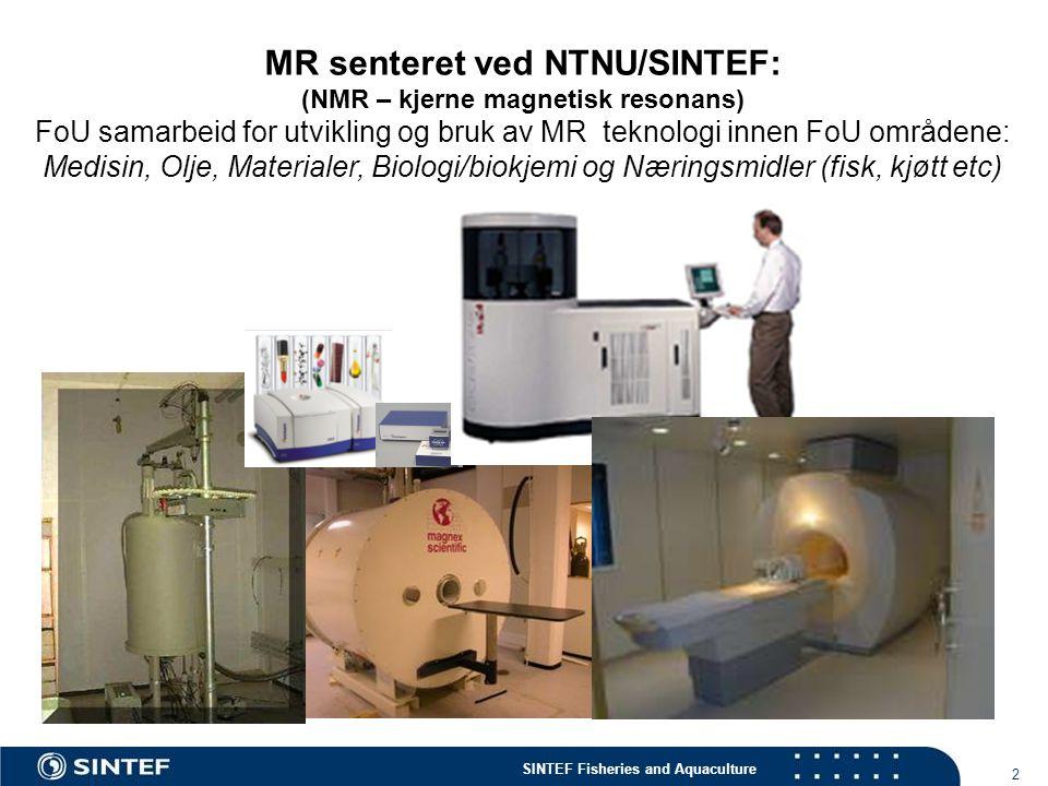 MR senteret ved NTNU/SINTEF: (NMR – kjerne magnetisk resonans)