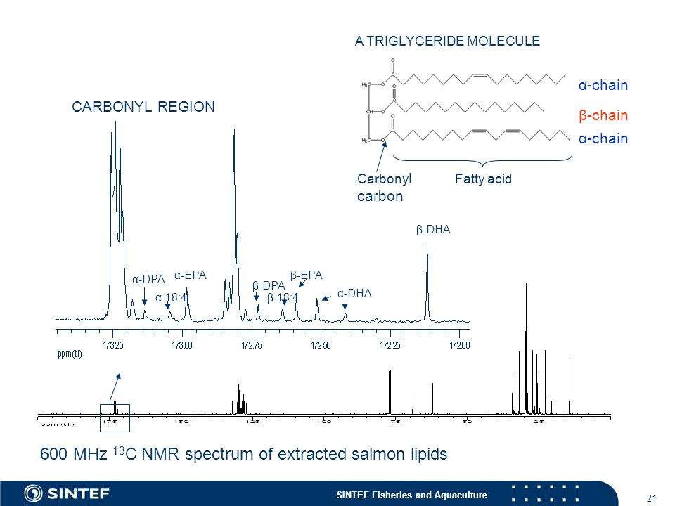 600 MHz 13C NMR spectrum of extracted salmon lipids