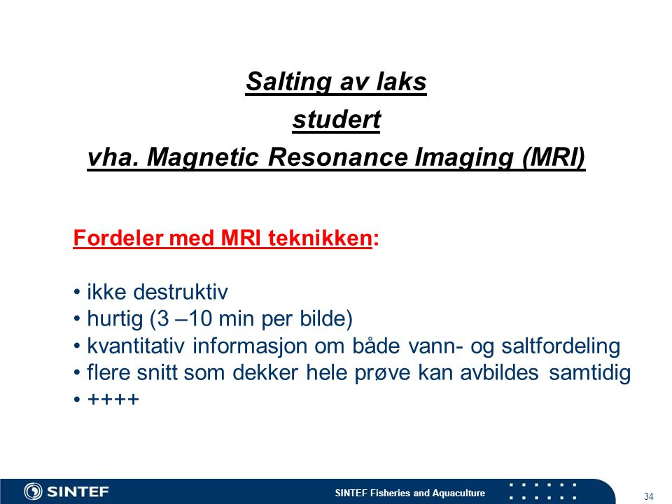 Salting av laks studert vha. Magnetic Resonance Imaging (MRI)