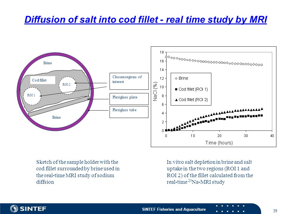 Diffusion of salt into cod fillet - real time study by MRI