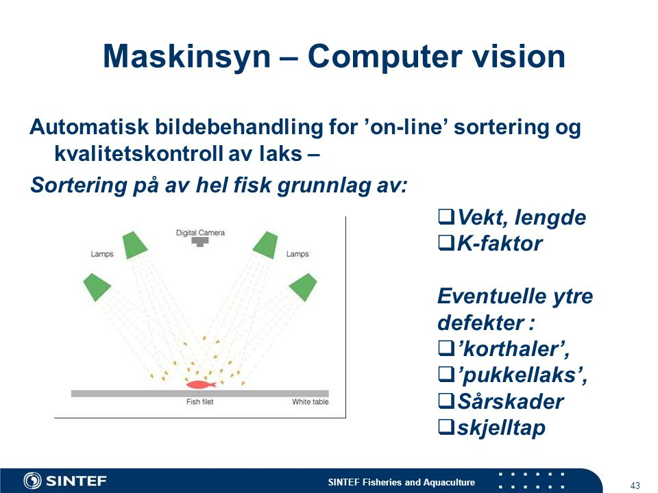 Maskinsyn – Computer vision