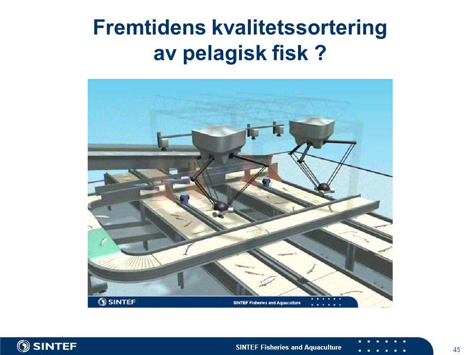 Fremtidens kvalitetssortering av pelagisk fisk