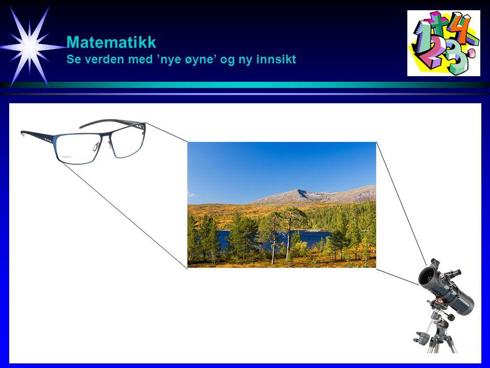 Matematikk Se verden med 'nye øyne' og ny innsikt