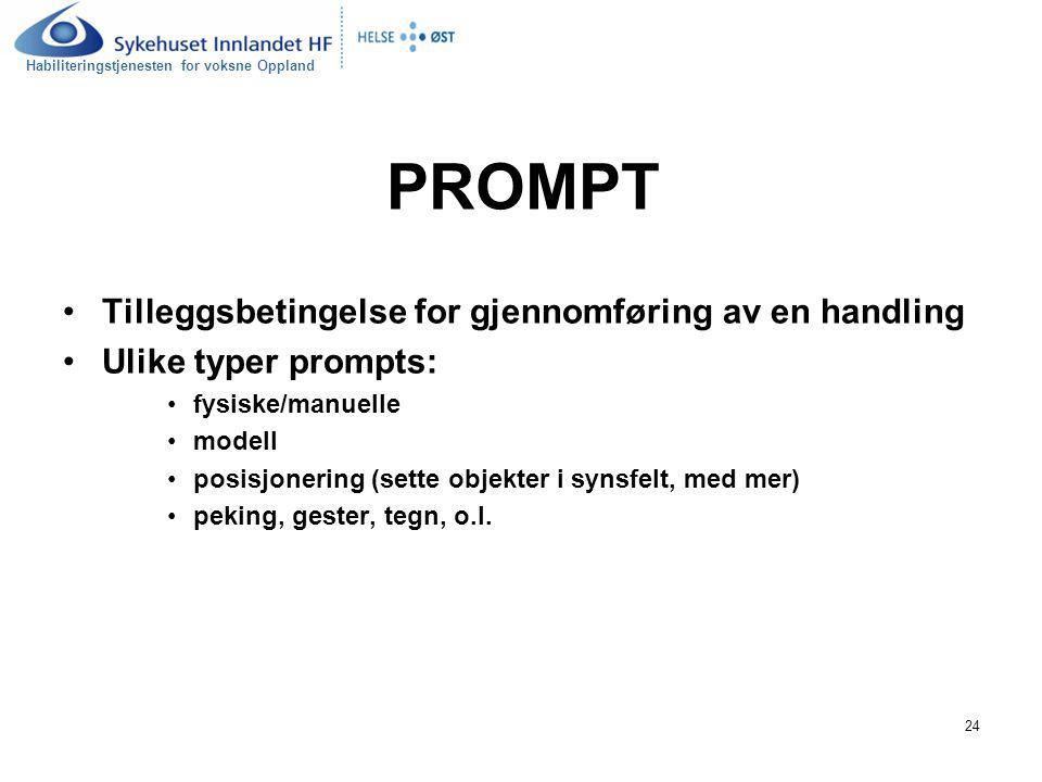 PROMPT Tilleggsbetingelse for gjennomføring av en handling