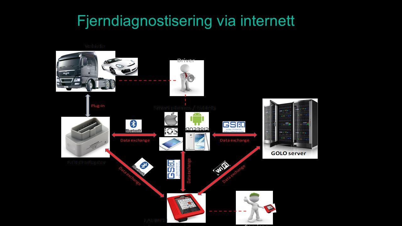 Fjerndiagnostisering via internett