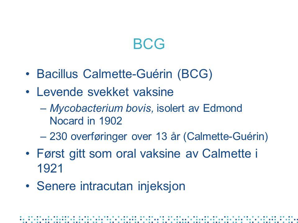 BCG Bacillus Calmette-Guérin (BCG) Levende svekket vaksine