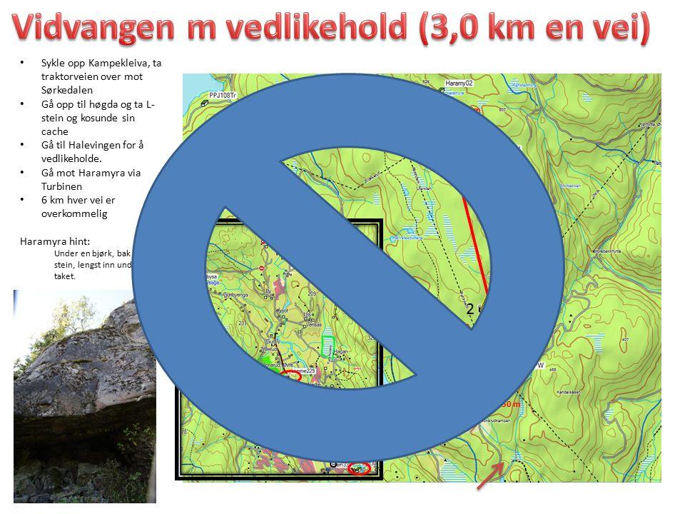 Vidvangen m vedlikehold (3,0 km en vei)
