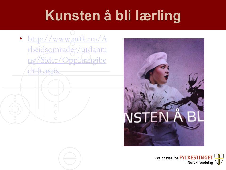 Kunsten å bli lærling http://www.ntfk.no/Arbeidsomrader/utdanning/Sider/Opplaringibedrift.aspx