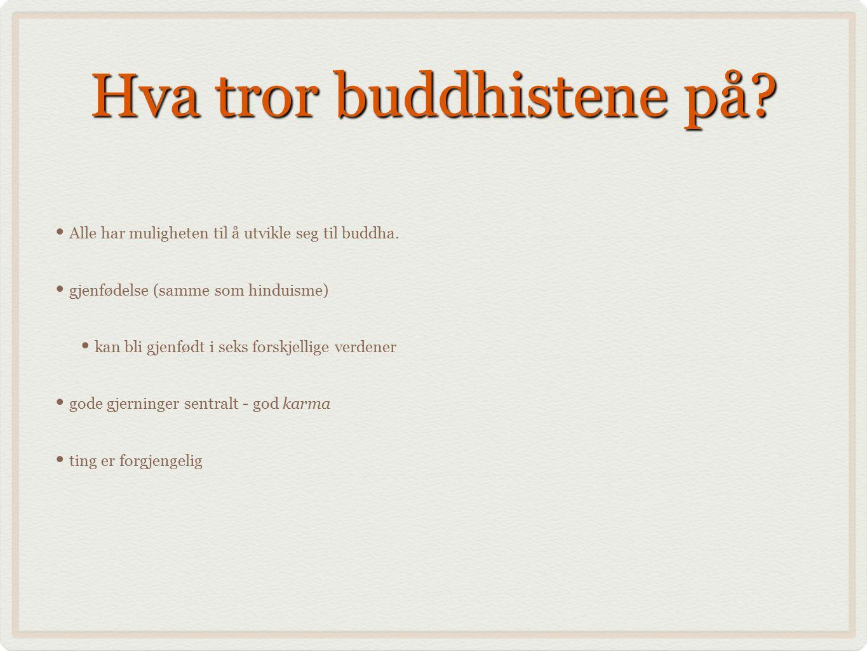 Hva tror buddhistene på