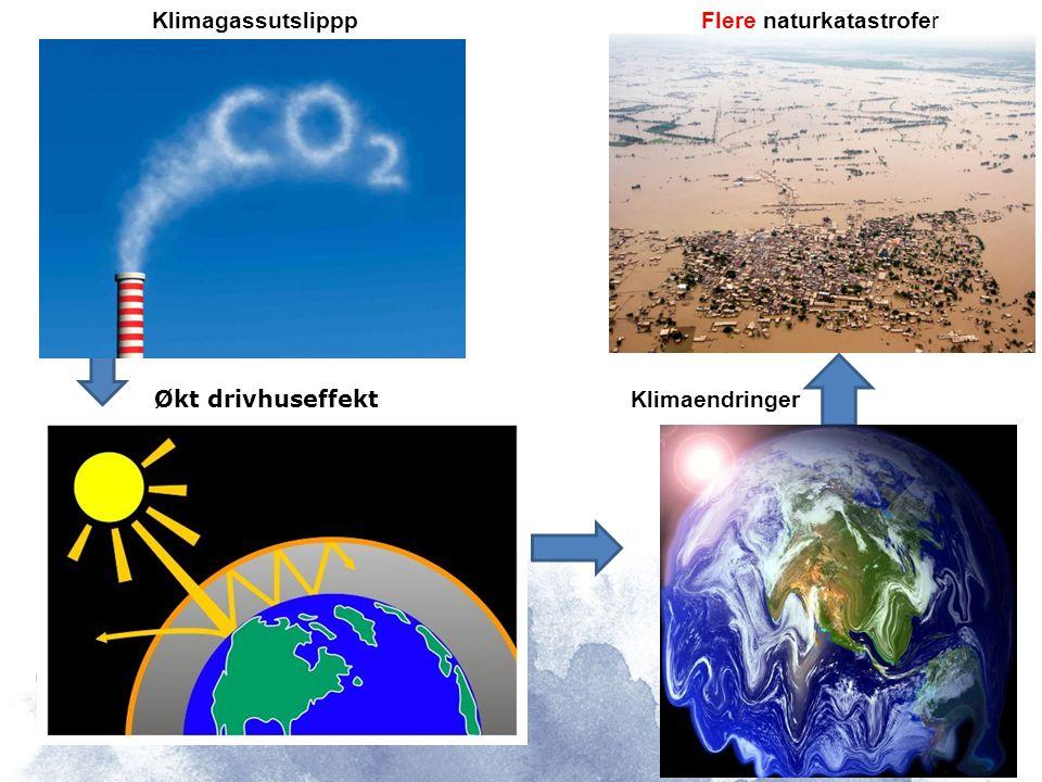 Hva er grunnen til klimaendringene