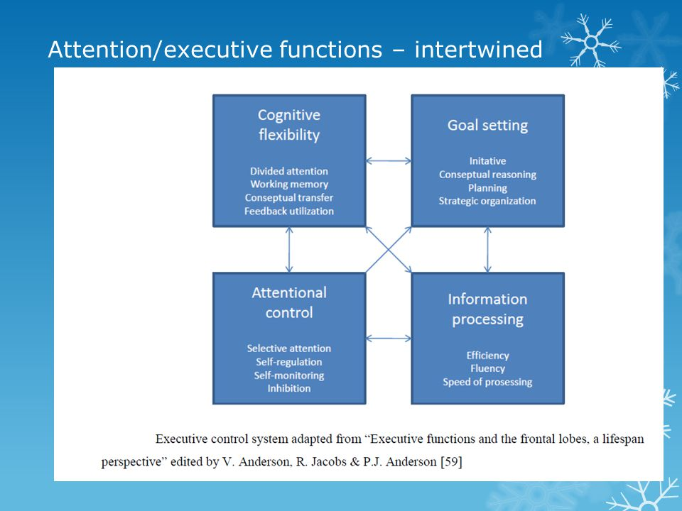 Attention/executive functions – intertwined
