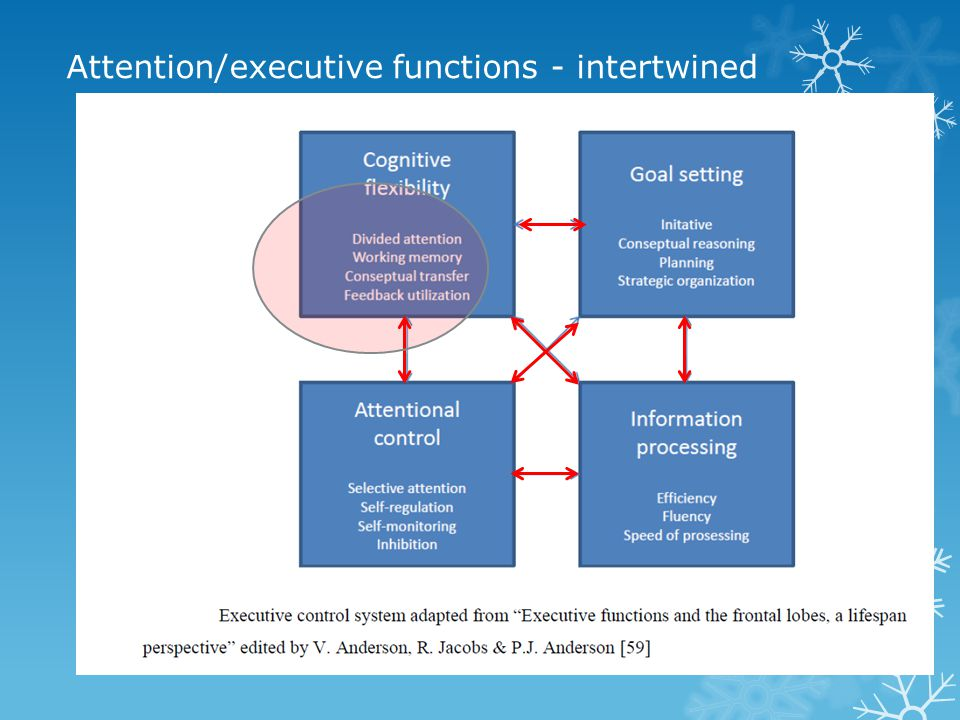 Attention/executive functions - intertwined