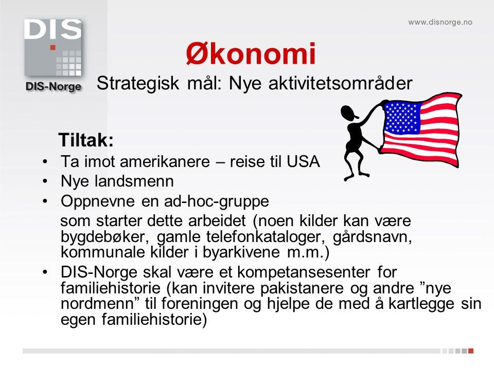 Økonomi Strategisk mål: Nye aktivitetsområder Tiltak: