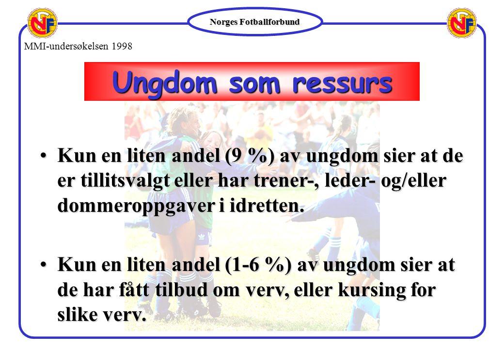 MMI-undersøkelsen 1998 Ungdom som ressurs.