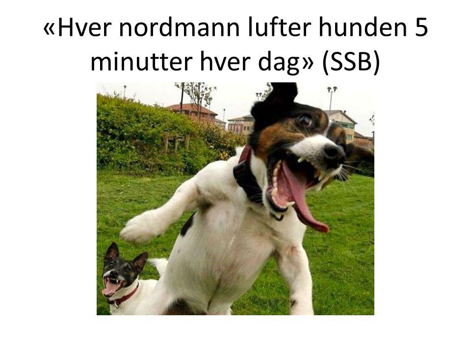 «Hver nordmann lufter hunden 5 minutter hver dag» (SSB)