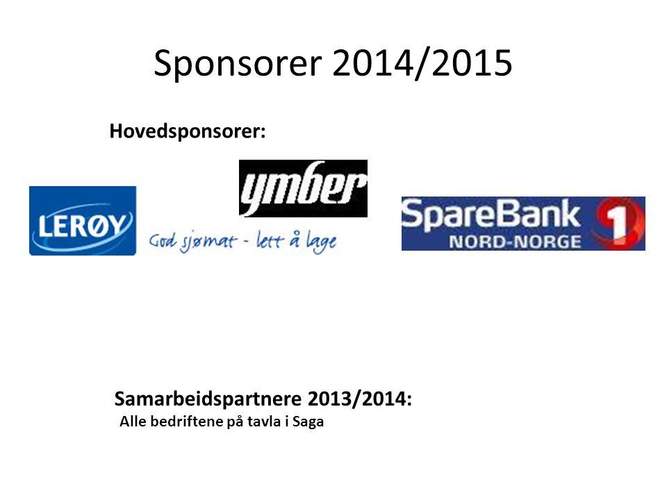 Sponsorer 2014/2015 Hovedsponsorer: Samarbeidspartnere 2013/2014: