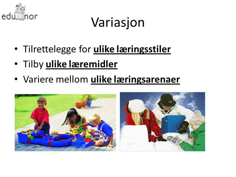 Variasjon Tilrettelegge for ulike læringsstiler Tilby ulike læremidler