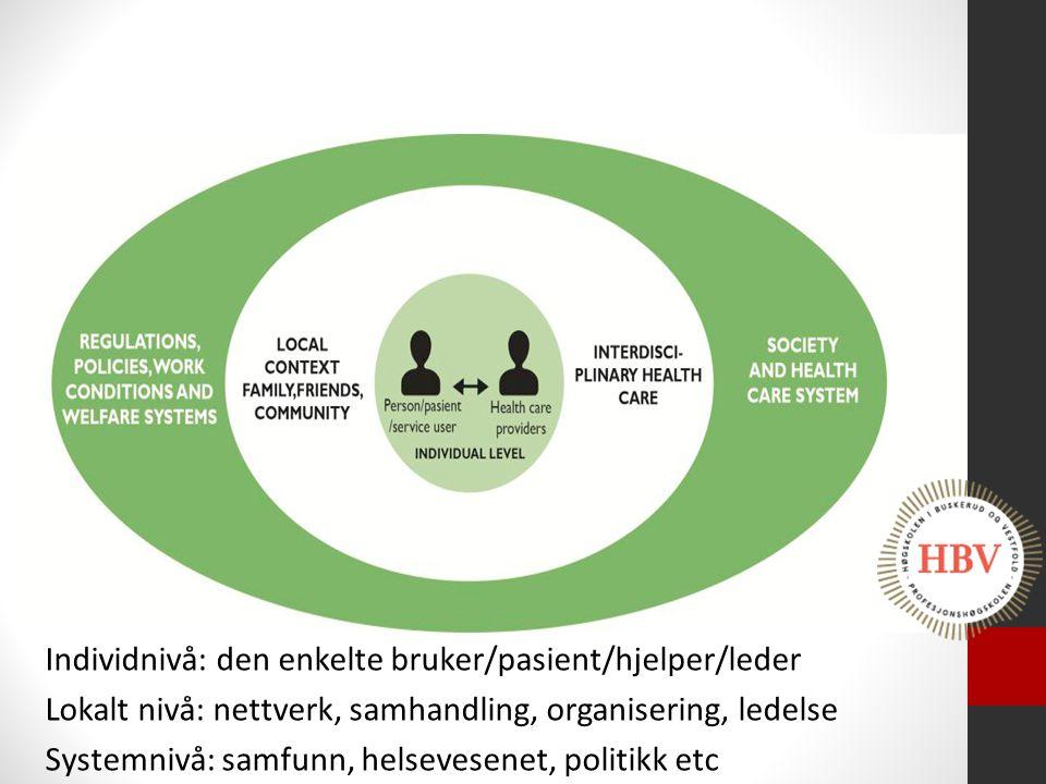 Individnivå: den enkelte bruker/pasient/hjelper/leder