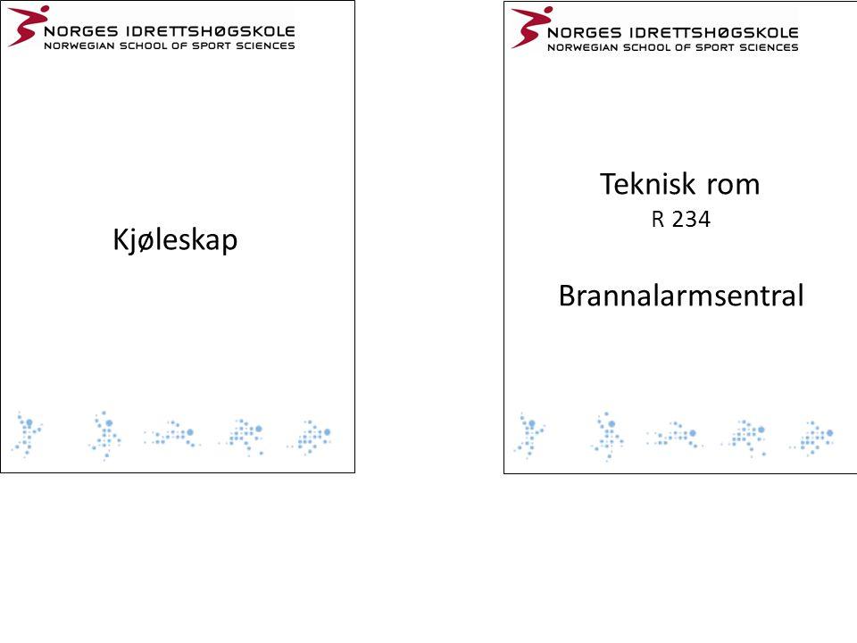 Kjøleskap Teknisk rom R 234 Brannalarmsentral
