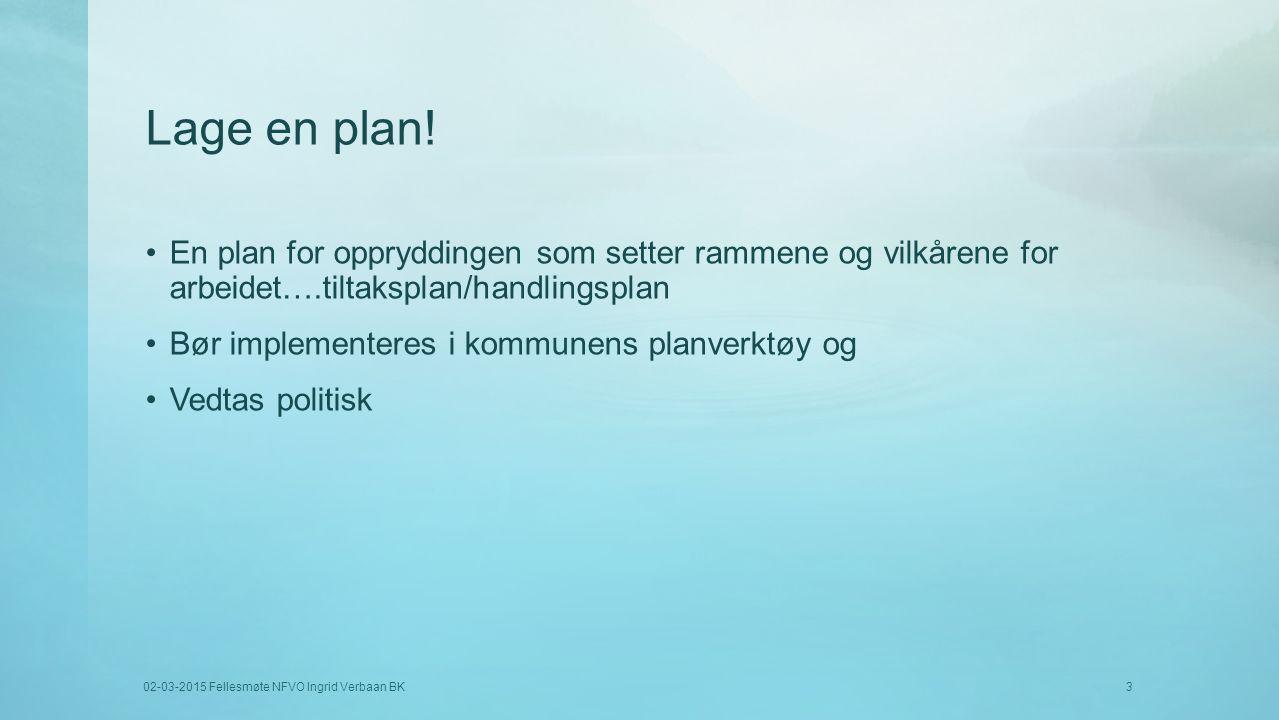 Lage en plan! En plan for oppryddingen som setter rammene og vilkårene for arbeidet….tiltaksplan/handlingsplan.