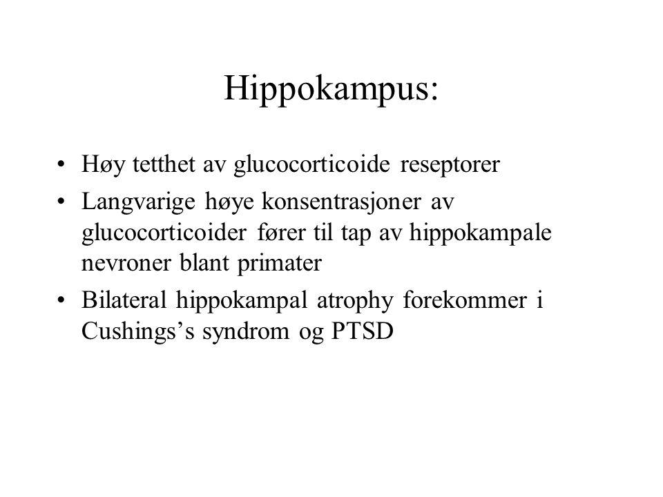 Hippokampus: Høy tetthet av glucocorticoide reseptorer