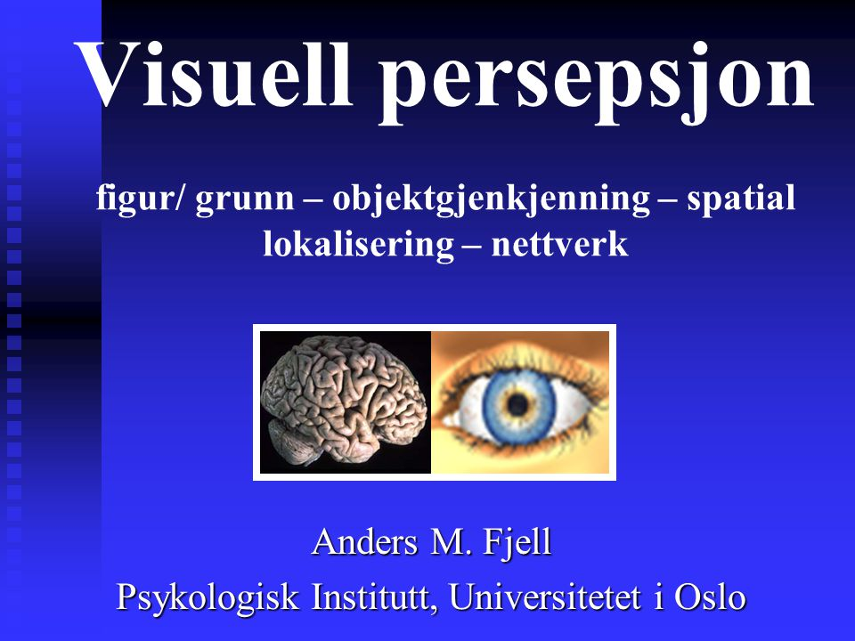 Anders M. Fjell Psykologisk Institutt, Universitetet i Oslo