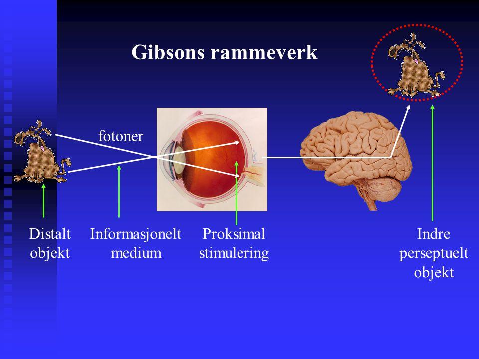 Gibsons rammeverk fotoner Distalt objekt Informasjonelt medium