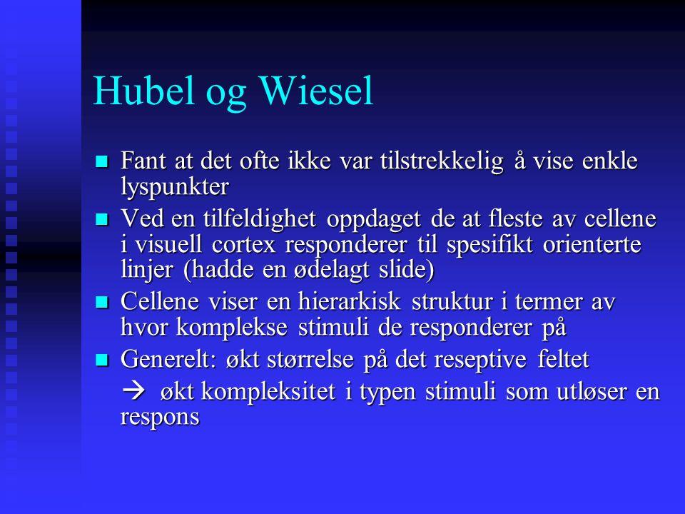 Hubel og Wiesel Fant at det ofte ikke var tilstrekkelig å vise enkle lyspunkter.