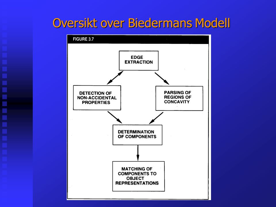 Oversikt over Biedermans Modell