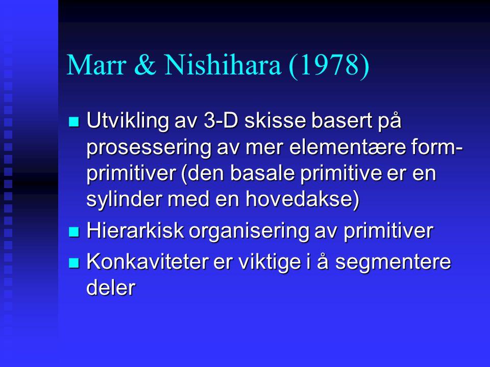 Marr & Nishihara (1978)